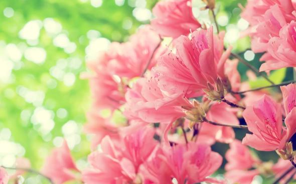 Photo by favim.com